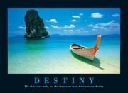p-218-destinypm5006__30264