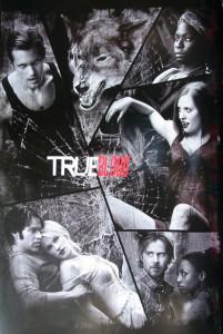 ER5519-Trueblood-Shattered Mirror