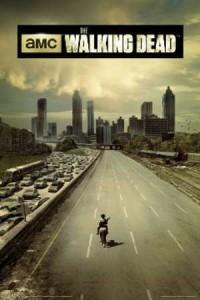 ER6436 WALKING DEAD- Season 1