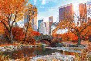 ER6891New York Central Park-Autumn