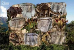 ER5756  DINOSAURS FACTS