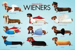 ER5824 WIENERS COLOUR DOGS