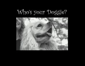 9047 SB- Who's your Doggie