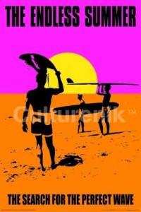 ER3949  THE ENDLESS SUMMER SURFER