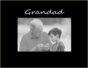 9041 SB- Grandad