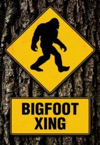ER7076 BIGFOOT XING