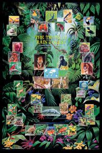 2400-2790 Tropical Rain Forest