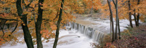 2390-61951-Anderson Falls-11.75x36