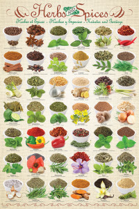2400-0598-Herbs & Spices-24x36