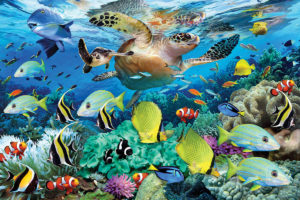 2400-0626-Sea Turtle Journey-36x24