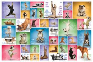2400-0954-Yoga Dogs-36x24