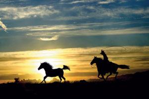 2400-61358-Sunset Ride-24x36