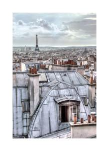 16554 Paris Rooftops
