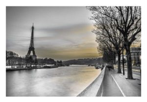 16605 River Seine & The Eiffel Tower