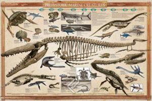 2450-0318-Reconstructed Prehistoric Marine Creatures-36x24