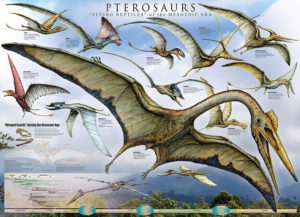 2450-0680-Pterosaurs - Flying Reptiles-36x24