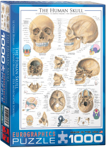 6000-0306-Human Skull- Item# 6000-0306 - Puzzle size 19.25x26.5 in
