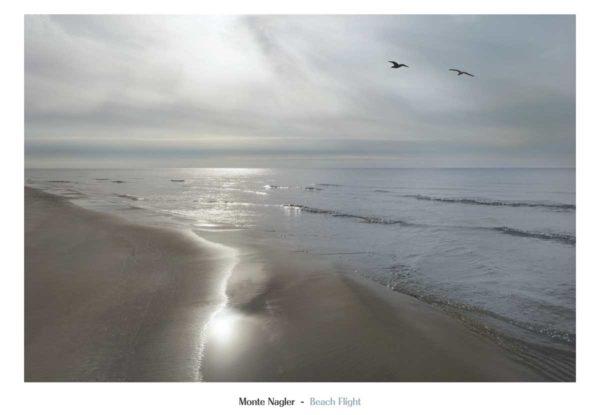 NMP331 Beach Flight