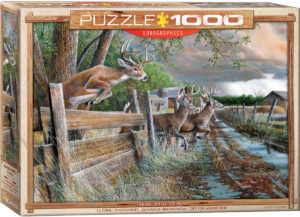 6000-0794-Abandoned Farm-Item# 6000-0794- Puzzle Size 26.625x19.2 in