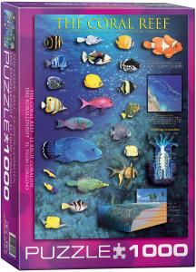 6000-1170 Coral Reef