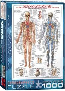 6000-4940-Circulatory System- Item# 6000-4940 - Puzzle size 19.25x26.5 in