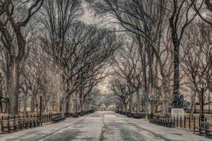 ER7486 ASSAF FRANK NEW YORK-Central Park