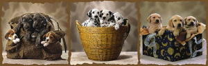 2390-4806 Puppy Families 35.5 x 11.75