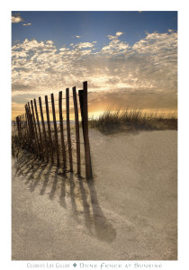 VDP126-Dune Fence at Sunrise