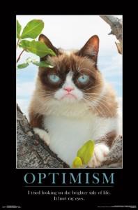 RP15087-Grumpy Cat - Brighter Side