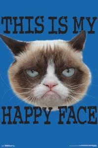 RP15884-Grumpy Cat - Face