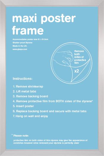 p-3275-24x36_silver_poster_frame__03052.jpg